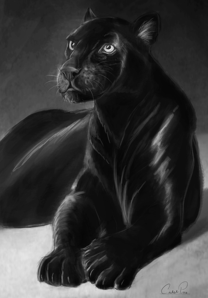 black_panther_by_calebp1716-daqulna1