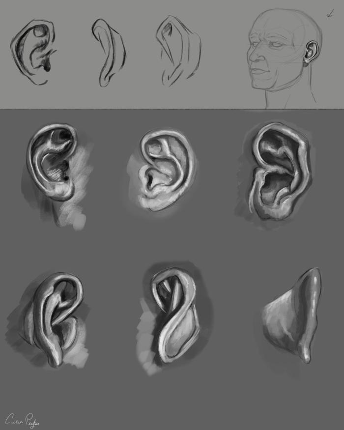 Ears Practice